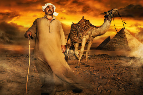 DAVID-LUND__0024_VERY-VERYbest-ever-camel-man-v-10-copy.tif-copy
